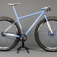 Custom Single Speed 29er