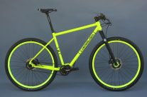 Patrick's Pinion adventure bike